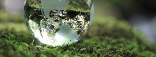 Environmental and social contribution activities